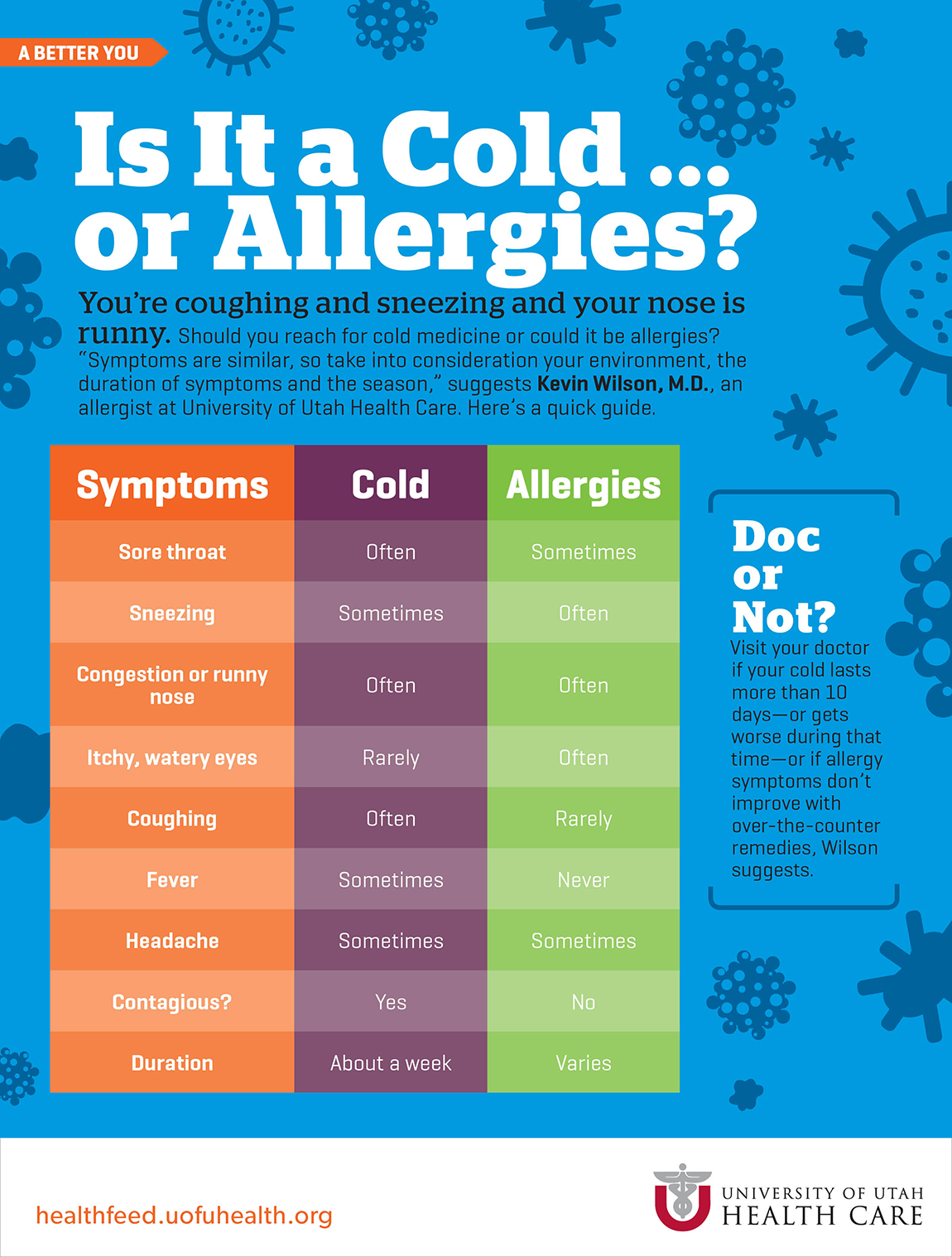 How to distinguish allergies from colds in adults and children 42