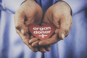 Can I Become a Living Organ Donor?