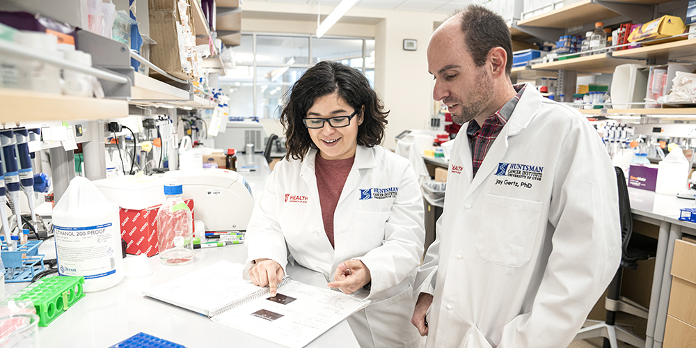 Researchers Discover a Key Protein in Endometrial Cancer Growth