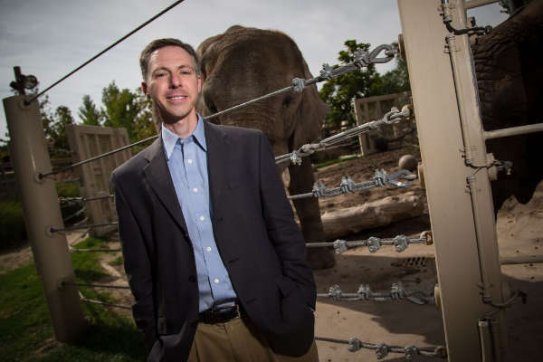 Why Elephants Rarely Get Cancer