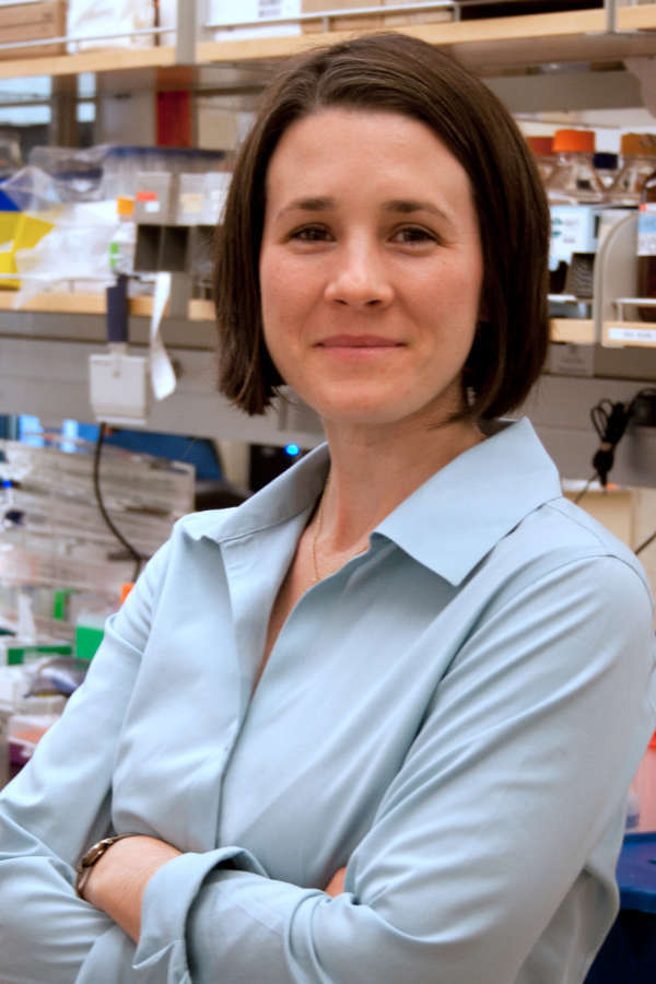 A New Tool to Confront Lung Cancer