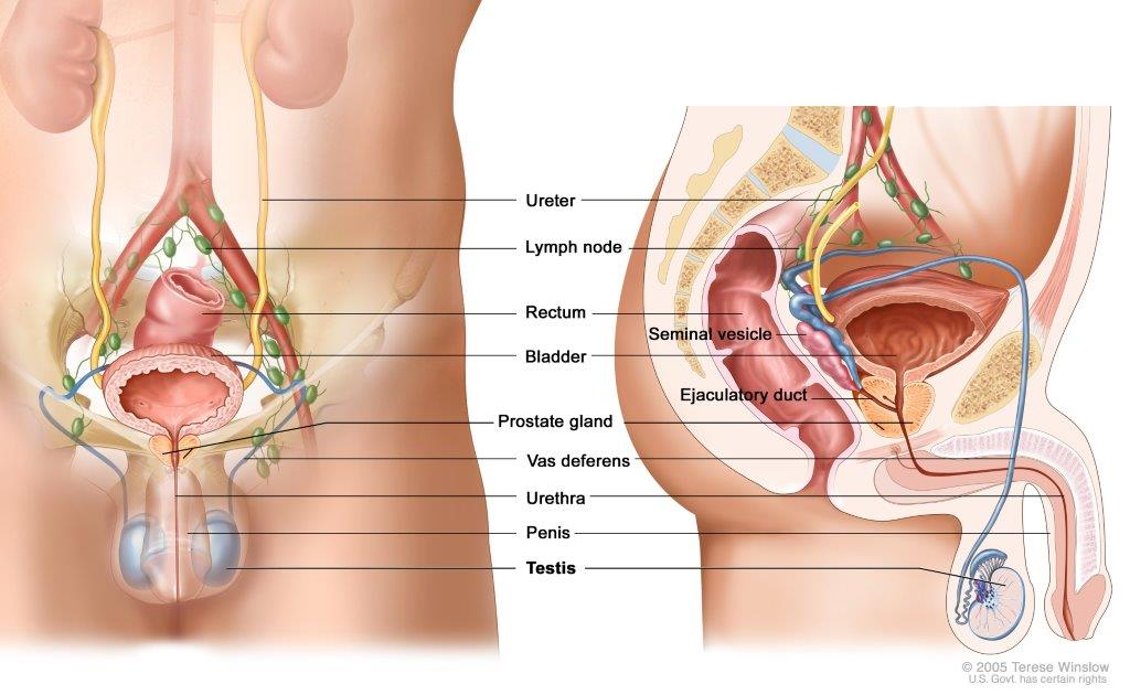 best prostate cancer treatment centers near me