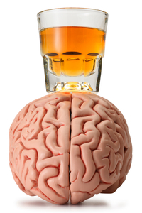 A Brain Region for Resisting Alcohol's Allure