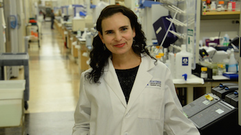 Huntsman Cancer Institute Investigator Jody Rosenblatt Selected as HHMI Faculty Scholar